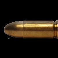 Henry-Zeigland-bullet