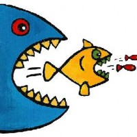 fish-eat-fish-richard-cook-artville-com