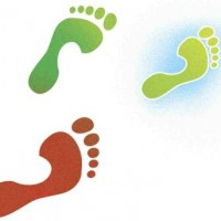 green-basics-ecological-footprint-greener-feet